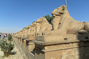 15-02-13 - Gallery of aries in front of Karnak Temple