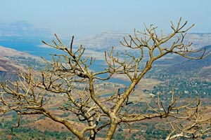 12-03-16 - Vista from Elephants Head Point to Dhom Lake (Old Mahabaleshwar)